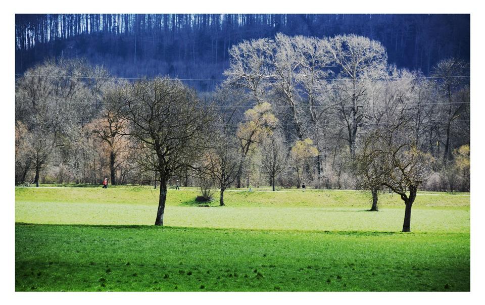 Erlinsbach-Erzbach-Hügellandschaft-Fotografie (5)