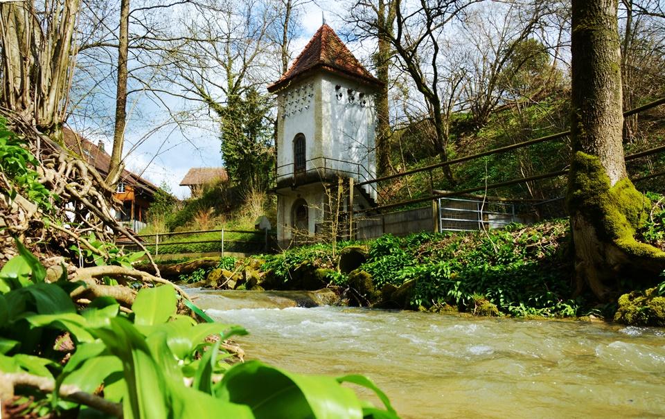 Erlinsbach-Erzbach-Hügellandschaft-Fotografie (9)