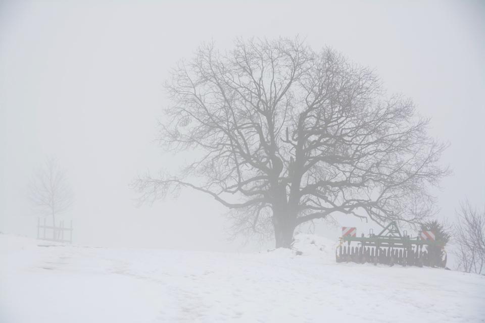 aarau-winter-nebel-fotografie